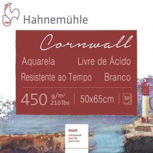 papel-cornwall-textura-fina-450g-pacote-com-10-folhas-50x65cm-hahnemuhle